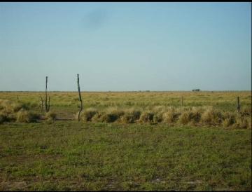 La Pampa - Vende Rural Argentina JTS