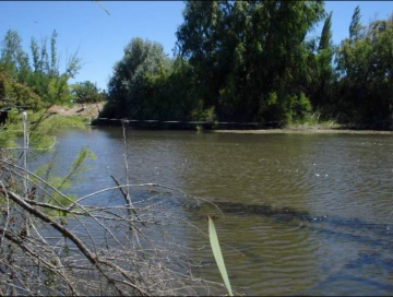 Rural Argentina Ventas