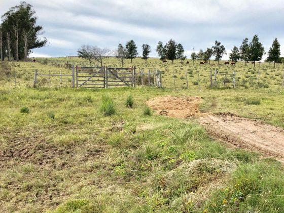 www.ruralargentina.com